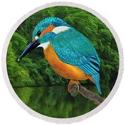 Common Blue Kingfisher Round Beach Towel