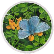 Common Blue On Bird's-foot Trefoil Round Beach Towel
