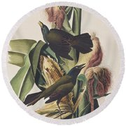 Common Crow Round Beach Towel by John James Audubon