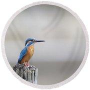 Common Kingfisher 3 Round Beach Towel