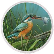 Round Beach Towel featuring the painting Common Kingfisher by Mike Brown