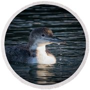 Round Beach Towel featuring the photograph Common Loon by Randy Hall