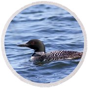 Common Loon Round Beach Towel by Teresa Zieba