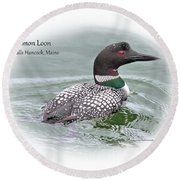 Round Beach Towel featuring the photograph Common Loon Tidal Falls Maine by Debbie Stahre