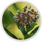 Round Beach Towel featuring the photograph Common Milkweed by Paul Mashburn