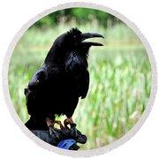 Common Raven Round Beach Towel