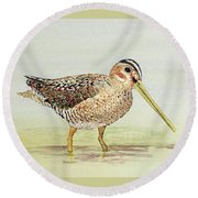 Common Snipe Wading Round Beach Towel