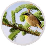 Common Yellow-throat Round Beach Towel