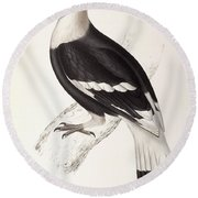 Concave Hornbill Round Beach Towel by John Gould