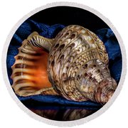 Conch Shell Round Beach Towel