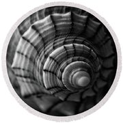 Conch Shell In Black And White Round Beach Towel