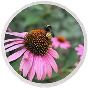 Cone Flowers And Bee Round Beach Towel by Sheila Brown