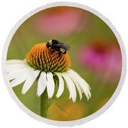 Coneflower And Bee Round Beach Towel by Phyllis Peterson
