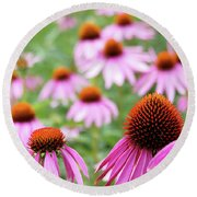 Coneflowers Round Beach Towel