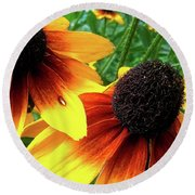 Round Beach Towel featuring the photograph Coneflowers by Robert Knight