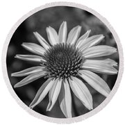 Conehead Daisy In Black And White Round Beach Towel by Arlene Carmel