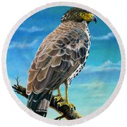 Congo Serpent Eagle Round Beach Towel by Anthony Mwangi