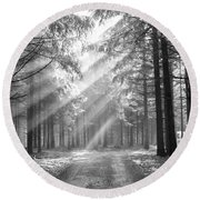 Conifer Forest In Fog Round Beach Towel