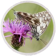 Contact - Butterflies On The Bloom Round Beach Towel by Michal Boubin