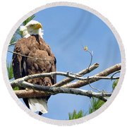 Round Beach Towel featuring the photograph Cool Breeze by Glenn Gordon