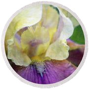 Cool Toned Purple Iris 0319 Idp_3 Round Beach Towel