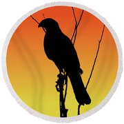 Coopers Hawk Silhouette At Sunset Round Beach Towel