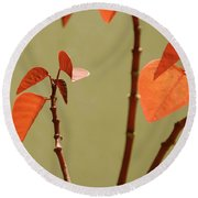 Round Beach Towel featuring the photograph Copper Plant 2 by Ben and Raisa Gertsberg