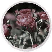 Copper Rouge Rose In Almost Black And White Round Beach Towel
