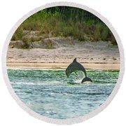 Coquina Dolphin Round Beach Towel