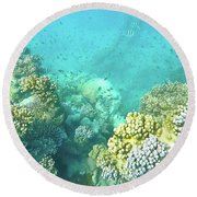 Coral Round Beach Towel