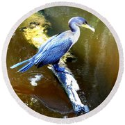 Round Beach Towel featuring the photograph  Cormorant 000 by Chris Mercer