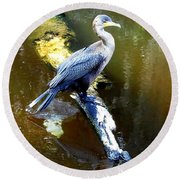 Round Beach Towel featuring the photograph   Cormorant 001 by Chris Mercer