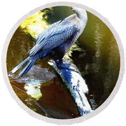 Round Beach Towel featuring the photograph Cormorant 001a  by Chris Mercer