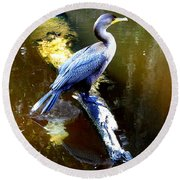 Round Beach Towel featuring the photograph   Cormorant 002 by Chris Mercer