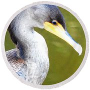Round Beach Towel featuring the photograph    Cormorant 003 by Chris Mercer