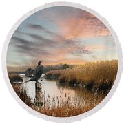 Cormorant At Sunset Round Beach Towel