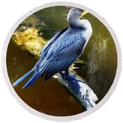 Round Beach Towel featuring the photograph Cormorant  by Chris Mercer
