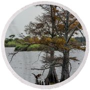 Round Beach Towel featuring the photograph Cormorant by Paul Freidlund