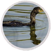 Cormorant Praying Fishing   Round Beach Towel
