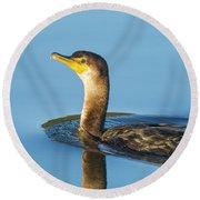 Cormorant Reflection Round Beach Towel
