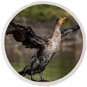 Cormorant Shaking Off Water Round Beach Towel