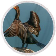 Cormorant Wings Round Beach Towel