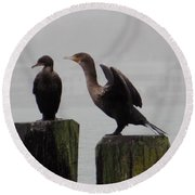 Cormorants In Bellingham Round Beach Towel
