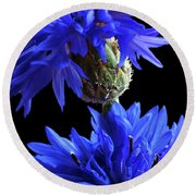 Cornflower Blues Round Beach Towel