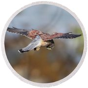 Cornish Kestrel Hunting Round Beach Towel