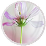 Round Beach Towel featuring the photograph Cosmos 3 by Elena Nosyreva