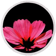 Cosmos Bloom Round Beach Towel