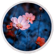 Round Beach Towel featuring the photograph Cosmos  by Rachel Mirror