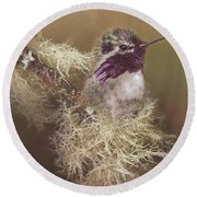 Costas Hummingbird Painted Round Beach Towel