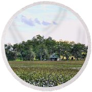 Cotton Field In Georgia Round Beach Towel by Jan Amiss Photography